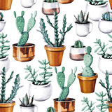 Watercolor cactus desert tropical garden seamless pattern. Watercolour cactus pattern Stock Photo