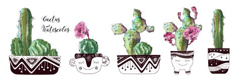Watercolor cactus set isolated on white background. royalty free stock photos