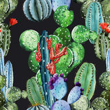 Watercolor cactus pattern Stock Image