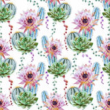 Watercolor cactus pattern Stock Photography