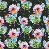Watercolor cactus pattern Royalty Free Stock Photos