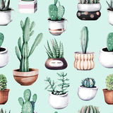 Watercolor cactus in pot tropical garden seamless pattern. royalty free illustration