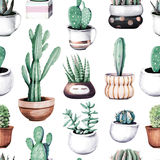 Watercolor cactus in pot tropical garden seamless pattern. Royalty Free Stock Image