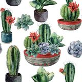 Watercolor cactus seamless pattern. Hand painted cereus, echeveria, echinocactus grusonii with green and blue succulent Royalty Free Stock Photography