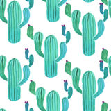 Watercolor cactus seamless pattern. On white background Royalty Free Stock Image