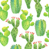 Watercolor cactus seamless pattern Royalty Free Stock Photography
