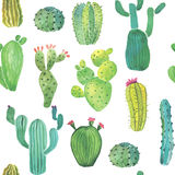 Watercolor cactus seamless pattern Royalty Free Stock Photos