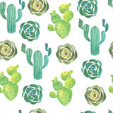 Watercolor cactus seamless pattern Stock Photos