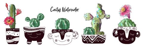 Watercolor cactus set isolated on white background. royalty free stock photography