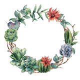 Watercolor cactuses wreath with eucalyptus branch. Hand painted cereus, echeveria, echinocactus grusonii and succulent Royalty Free Stock Photo