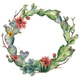 Watercolor cactuses wreath with flowers and succulent. Hand painted flowering opuntia, tree branch, echinocactus Stock Images