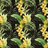 Watercolor canna flowers pattern vector illustration