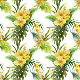 Watercolor canna flowers pattern Royalty Free Stock Image