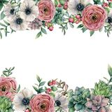 Watercolor card with berries and flowers. Hand painted ranunculus, anemone, succulent, red berry and eucalyptus leaves. On white background. Floral illustration stock illustration