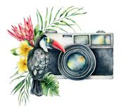 Watercolor card composition with camera, flower bouquet an toucan. Hand painted photographer logo with protea and leaves. Illustration isolated on white royalty free stock image