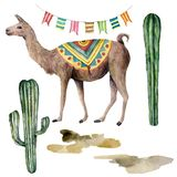 Watercolor card with llama, flag garland and cacti. Hand painted beautiful illustration with animal, floral and garland. On white background. For design, print royalty free illustration