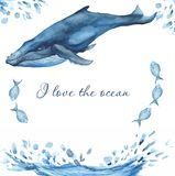 Watercolor card with oceanic mammals. stock illustration