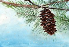 Watercolor card with pine branch and pine cone. vector illustration