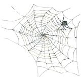 Watercolor card with spider and web. Scary spiderweb Halloween illustration on white background stock illustration