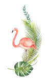 Watercolor card of tropical leaves and the pink Flamingo Stock Photos