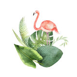Watercolor card of tropical leaves and the pink Flamingo isolated on white background. Stock Images