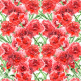 Watercolor carnation clove red flower seamless pattern texture Stock Image