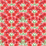 Watercolor carnation clove red flower seamless pattern texture Royalty Free Stock Image