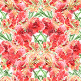 Watercolor carnation clove red flower seamless pattern texture Stock Photography