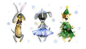 Watercolor cartoon illustration. Set of cute cartoon dogs. Watercolor cartoon cute puppies dressed in carnival costumes. Hand drawn illustration on white Stock Photos