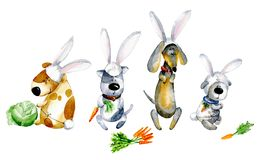 Watercolor cartoon illustration. Set of cute cartoon dogs in bunny costumes. Royalty Free Stock Photos