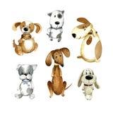Watercolor cartoon illustration. Set of cute cartoon dogs. Watercolor cartoon cute puppies. Hand drawn illustration on white background Royalty Free Stock Image