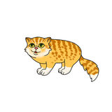Watercolor cartoon image of funny red and yellow long hair cat with bushy tail, green eyes, stripes  Royalty Free Stock Image
