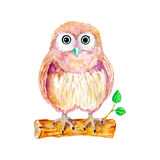 Watercolor cartoon owl sitting on the branch Royalty Free Stock Photos