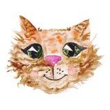 Watercolor Cat Face Stock Image