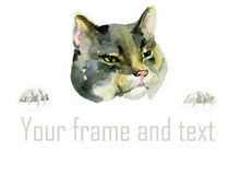 Watercolor  cat head and paws. Holding the advertisement Royalty Free Stock Photos