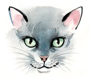 Watercolor cat. Ink and watercolor sketch of a grey cat Stock Images
