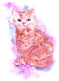 Watercolor cat on a white background with white spray Royalty Free Stock Photos