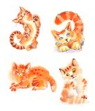 Watercolor cats red. Watercolor cats, red, nice sweet and funny Royalty Free Stock Images