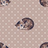 Watercolor cats, seamless pattern 2. Watercolor cats, seamless pattern. Polka dot background Stock Photo