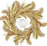 Watercolor cereal wreath Stock Photos