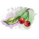 Watercolor cherries with colored spot Stock Photos