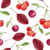 Watercolor cherries seamless pattern Stock Photography