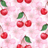 Watercolor cherry berry sakura seamless pattern texture background vector Royalty Free Stock Photos