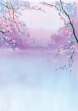 Watercolor of Cherry Blossom Blooms Stock Photography