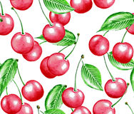 Watercolor cherry pattern Royalty Free Stock Images