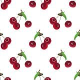 Watercolor cherry seamless pattern on white background vector illustration