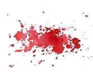 Watercolor cherry spray Stock Photography
