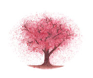 Watercolor cherry tree Royalty Free Stock Photo