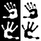 Watercolor children palm in black and white Stock Photo