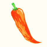 Watercolor chili pepper illustration. Stock Photos